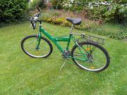 Jungendmountainbike Ragazzi Liner in grün