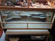 Terrarium osb 150x50x50 cm mit