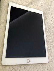 iPad - Modell 2017 - Gold - 32