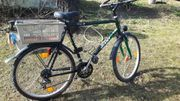 Mountainbike 26 Zoll Giant Terrago