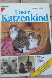 Unser Katzenkind Aufzucht und Pflege