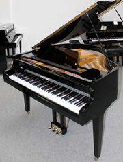 Flügel Klavier Hyundai G 50