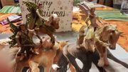 Bayala Elfe und Pferd