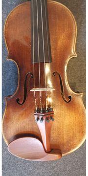 Meister Violine 4 4 von