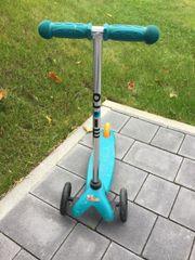 Roller / Kickboard