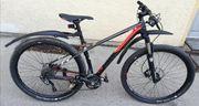 Fahrrad Focus Raven 29er Carbon