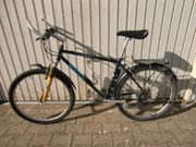 MTB Bianchi 26