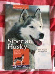 Buch Siberian Husky