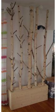 Raumtrenner Raumteiler getrocknete Birkenstämme Birkenstamm