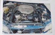 DB 560SEL - Typ 126 - Oldtimer