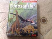 Buch Dinosaurier entdecken