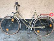 Vintage Damenrad - Mega Look