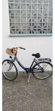 Fahrrad Damen Pegasus 26 zoll