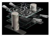 Glas - Raclett- Maybaum Design