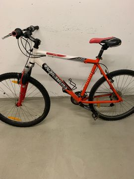 Herren Fahrrad in Tschagguns Herren Fahrräder kaufen und