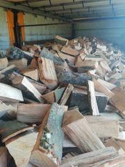 Brennholz feuerholz Buche und Eiche