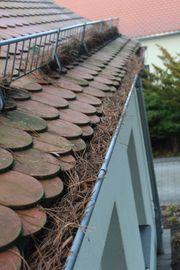 Dachrinnen-Reinigung für ihr Haus Dachrinne