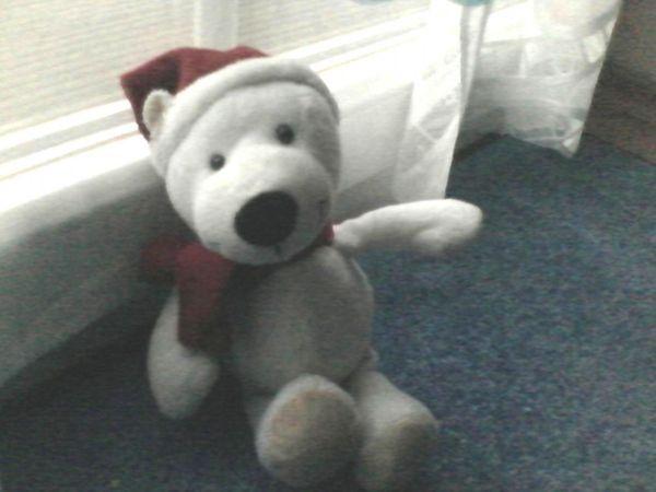 Spielzeug - Plüschtier - Plüsch - Bär - Weihnachtsbär - weiß