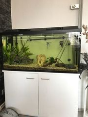 Komplett Aquarium