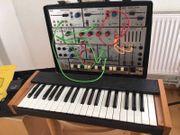 Ems Rehberg Logik Synthesizer analog
