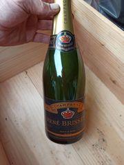 20 Flaschen Champagne René Brisset