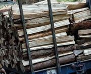 Brennholz weich hart trocken