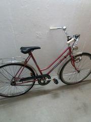 Frauen Fahrrad 28