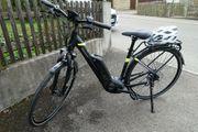 Damen E-Bike Pegasus