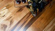 Edelholz Parkett Tigerwood schwarz gestreift -