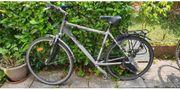 Raleigh Herren Trekking Fahrrad