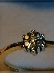 Brillantring Goldring Ring Brillanten mit