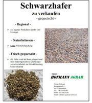 Schwarzhafer - gequetscht 20 kg Säcke -