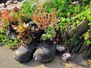 Garten Grundstückspflege Gartenarbeiten