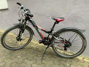 24 Fahrrad Mescalero