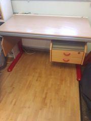 Moll Schreibtisch Kinder Jugendliche mitwachsend