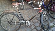 Opafahrrad Fahrrad Herrenfahrrad Phänomen