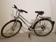 Herrenfahrrad Fahrrad Palatina XTReam 28