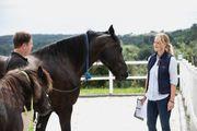 Bewusst wirken - Persönlichkeitsentwicklung mit Pferden