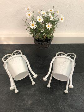 Blumentöpfe: Kleinanzeigen aus Nürnberg Galgenhof - Rubrik Sonstiges für den Garten, Balkon, Terrasse