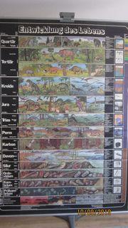 Alte Schulwandkarten