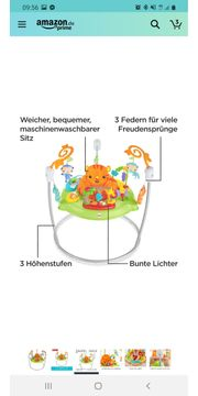 Fischer Price Hopser