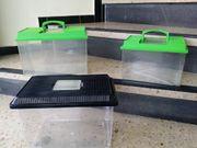 3 StückTransportbox für kleine Tiere