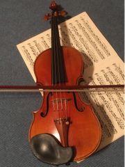 Geigenunterricht in Bamberg professionell und