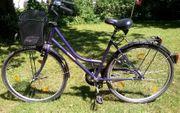 Damenrad Citycruiser