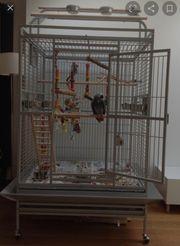Papageien Käfig TOP
