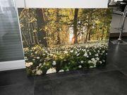 Leinwand Bild Wald 116x84cm