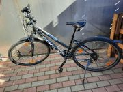 Damen Fahrrad Focus Lost Lagon