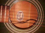Wester String Guitarre IBANES mit