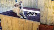 Nina wartet sehnlichst auf ihr