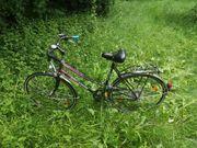 Fahrrad Erwachsene
